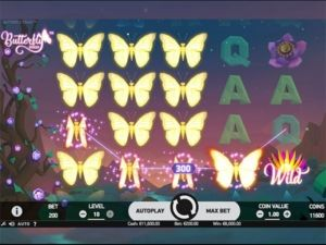 butterfly-staxx-suuri-voitto