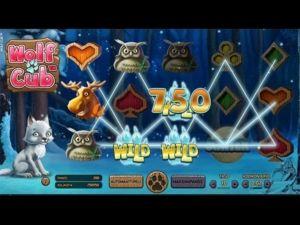 ridika-casino-kolikkopeli-voitto