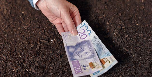 Ruotsin talletusrajat