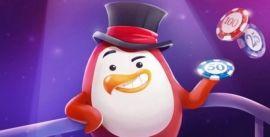Red Pingwin Bonus